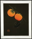 Persimmon - sold