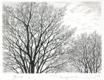 Winter Trees -- sold
