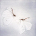 L'Ete Blanc - White Summer - sold