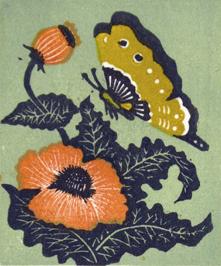 ray_butterflyflower_crop